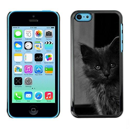 TopCaseStore / caoutchouc Hard Case Housse de protection la Peau - Cute Baby Kitten Grey Cat Furry Beast - Apple iPhone 5C