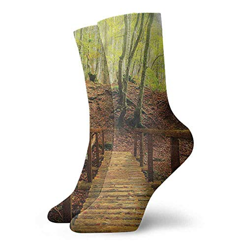 Happy Socks Landscape,River Footpath and Trees 3.4
