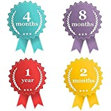 Baby Monthly Stickers - milestone for boys & girls first year newborn and baby shower decals gift