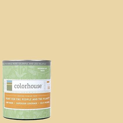 Inspired Flat Interior Paint, Stone .01, Quart