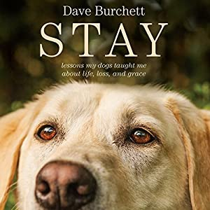 Stay Audiobook