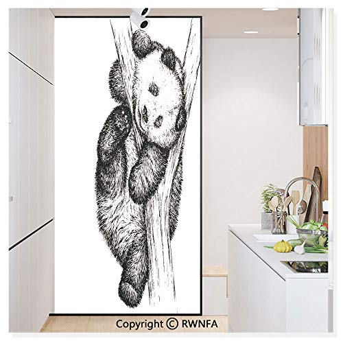 RWN Film Removable Static Decorative Privacy Window Films Cute Little Panda Bear on Tree Branch Fury Tropical Jungle Zoo Sketchy Print for Glass (17.7In. by 78.7In),Black White