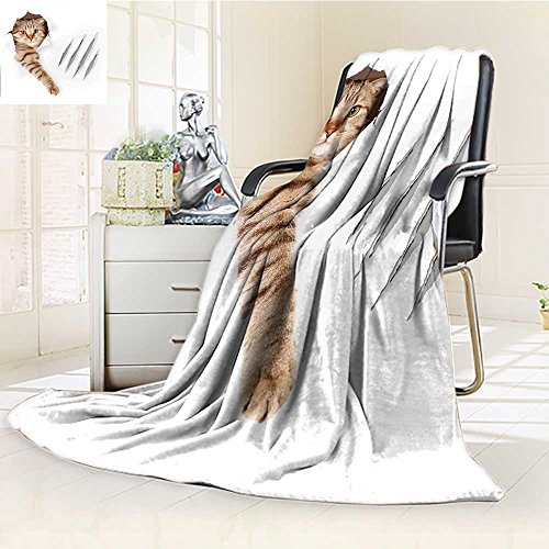Top vellux california king blankets for 2019