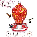 Hapito Hummingbird Feeder for Outdoors - Hand Blown Glass, 26 Ounces Nectar Capacity, No Leaking/Rustless, Containing Ant Moat, Metal Hook, Hemp Rope and Brush