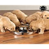 King International Stainless steel Dog Bowl | 1 Puppy Litter Food Feeding Weaning 29 cm | Silver Stainless Dog Bowl Dish | 29 cm diameter