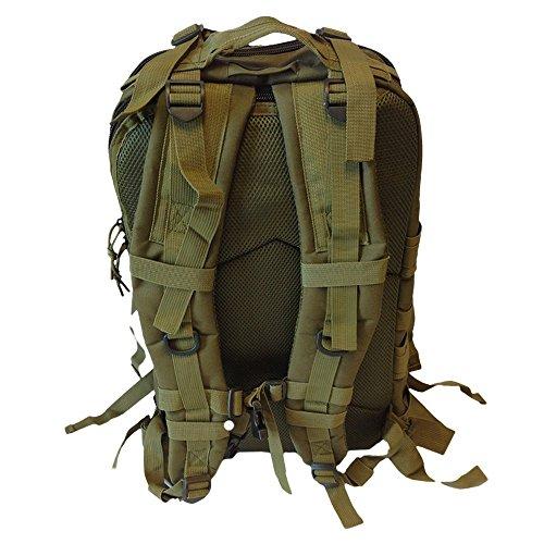 - Death Dealer Tactical Venom 48 Hour Assault Pack, OD Green