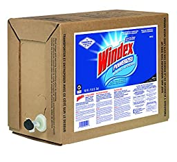 Windex Powerized Glass Cleaner with Ammonia-D (5-Gallon)