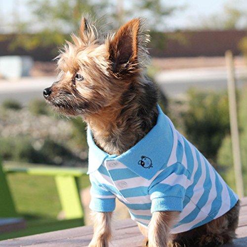 DOGGIE DESIGN Striped Dog Polos (Blue Niagara and White, M)