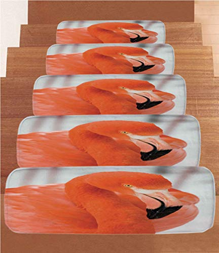 SoSung Flamingo Coral Fleece Stair Treads,Stair Tread Mats,American Flamingo Phoenicopterus Ruber Elegance in Wilderness Nature Picture,(Set of 5) 8.6