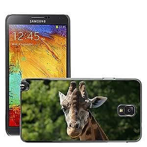 Etui Housse Coque de Protection Cover Rigide pour // M00109453 Jirafa Animal Zoo África Corbata // Samsung Galaxy Note 3 III N9000 N9002 N9005