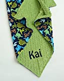 Personalize Double Minky Baby Blanket - Dinosaur Minky Front, You Choose SOLID COLOR minky