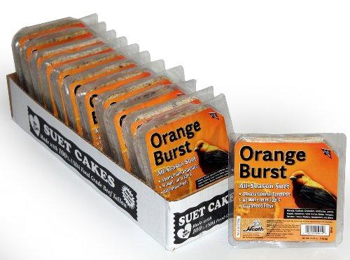 Heath Outdoor Products Dd 14 Orange Burst Suet Cake  11 25 Oz