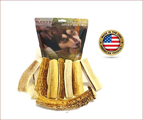 Bull Buffalo Horn (All Naturals North America Antler Dog Chews & Antler Chips Treats (Bonus)|Great Benefit Your Dog; Keep Your Dogs More Active and More Energy| Great Gift for Any Dogs| ONE Bound-Pack| 4-6 Pieces -Slit)