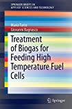 Treatment of Biogas for Feeding High Temperature Fuel Cells, Turco, Maria and Bagnasco, Giovanni, 3319032143