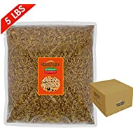 FROLIC WINGS 5 lbs Mealworms, 100 Percent Non-GMO Dried Delicious Mealworms Treats for Chickens, Wild Birds, Fish, Reptiles