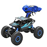 Rabing Newer 2.4GHz Racing Cars RC Cars Remote Control Cars Electric Rock Crawler Radio Control Vehicle Off Road Cars