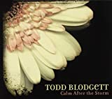 Calm After the Storm by Todd Blodgett (2011-11-01)