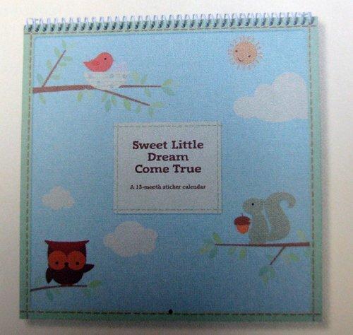Hallmark Sweet Little Dream Come True Boy 13 Month Sticker Calendar