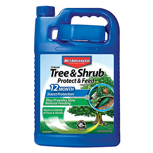 Bayer Advanced 701915 12 Month Tree and Shrub Protect and Feed Concentrate, 1-Gallon