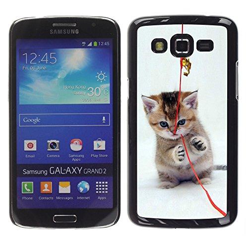 STPlus Gato en una caja Animal Carcasa Funda Rigida Para Samsung Galaxy Grand 2 #25