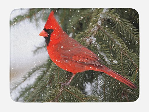 - Lunarable Cardinal Bath Mat, Northern Cardinal Bird Standing on a Pine Tree Branch in Winter Season, Plush Bathroom Decor Mat with Non Slip Backing, 29.5 W X 17.5 L Inches, Fern Green Ruby White
