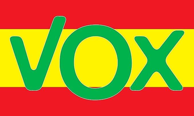 NEWTORO Bandera de España VOX 150 x 90 cm Durabol: Amazon.es: Jardín