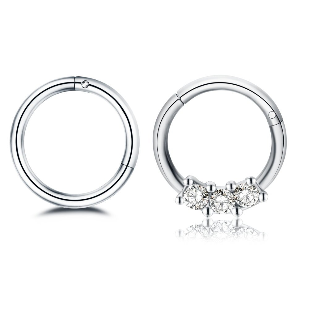 2Pcs 16g Stainless Steel Hinged Nose Rings Cartilage Sleeper Hoop Earrings Rose Gold Septum Piercings Jewelry (silver)