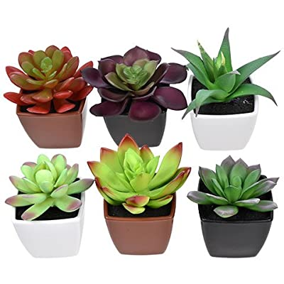 Toy Succulents Unique Succulent Artificial Potted House Indoor Bulk Garden Mini Small Planter Plant Aloe Cactus (Collection of 4): Home & Kitchen
