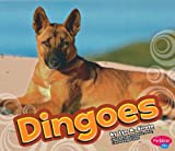 Dingoes (Pebble Plus: Australian Animals)