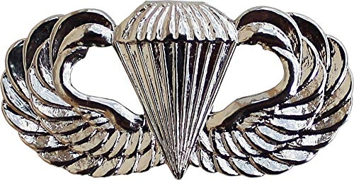 - Flagline Airborne (Cloisonne) - Other Military Lapel Pin