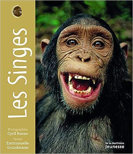 Les Singes. Portraits d'animaux