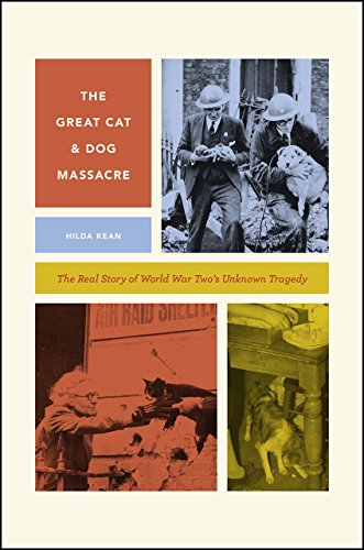 The Great Cat And Dog Massacre  The Real Story Of World War Twos Unknown Tragedy  Animal Lives