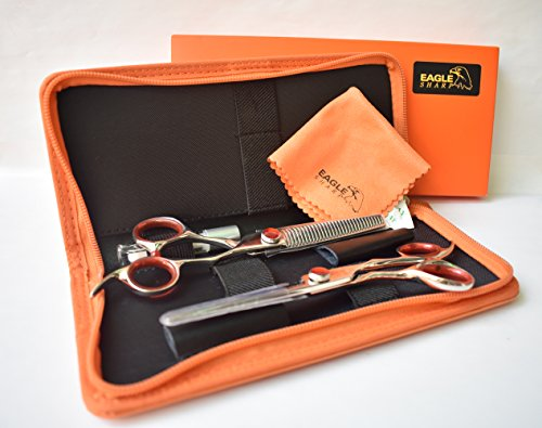 Professional 6.0-inch Shears Cutting &Thinning Scissors Kit Convex Edge Hairdressing Scissors Set Japanese 440C Stainless Steel with Free Fine Orange Leather Case by EAGLE SHARP