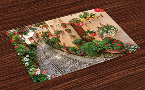 Lunarable Tuscan Place Mats Set of 4, Entrance to Mediterranean Tuscan House Rustic Wooden Door and Colorful Flowers Image, Washable Fabric Placemats for Dining Table, Standard Size, Green Salmon