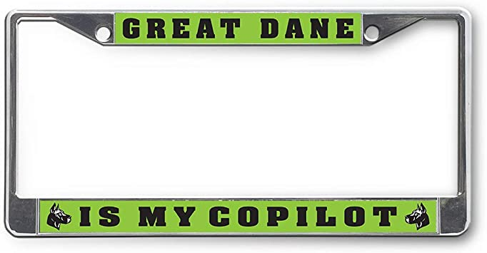 LICENSE PLATE ANGRY SEA TURTLE AUTO TAG