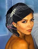Leslie Li Crystal Bridal Birdcage Veil & Crystal Pearl Hair Comb One Size White 27-71486 Silver