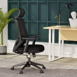 Ergonomic Office Chair, Mesh Chair with Lumbar Support, Tribesigns High Back Desk Chair with Breathable Mesh, Thick Seat Cushion, Adjustable Armrest, Backrest and Headrest, BIFMA Certified