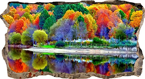 Startonight 3D Mural Wall Art Photo Decor Colored Trees in Water Reflection Amazing Dual View Surprise Large 32.28 inch By 59.06 inch Wall Mural Wallpaper Nature Collection Wall (Halloween Forest Escape)