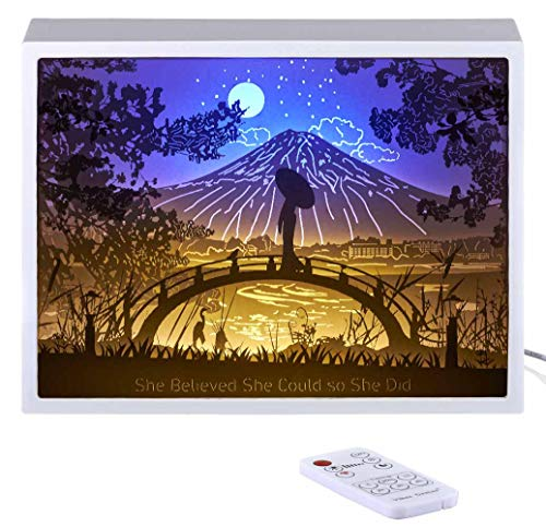 (Vibes Genius 913US Papercut Light Boxes, Decor Light of 13 to 19 Years Old Teen Girl Style, Gift Idea for Sister, Daughter, Niece, Cousin, Quinceanera or Birthday (She Believed She Could so She Did))