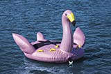 Best Towables - Solstice Water Sports Giant Flamingo Towable for boats Review