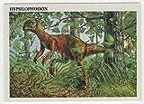Hypsilophodon - Dinosaurs: The Mesozoic Era (Trading Card) # 14 - Redstone Marketing 1993 Mint