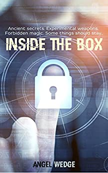 Inside the Box by Angel Wedge