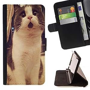 Dragon Case- Mappen-Kasten-Prima caja de la PU billetera de cuero con ranuras para tarjetas, efectivo Compartimiento desmontable y correa para la mu?eca FOR Sony Xperia Z1 M51W Z1 mini D5503- Cat Cute Kitty