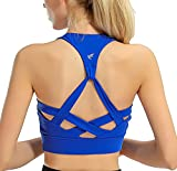freeskin Fitness Women Sport Bra Fitness Padded Yoga Bra Workout Gym Top(2171Blue,L)