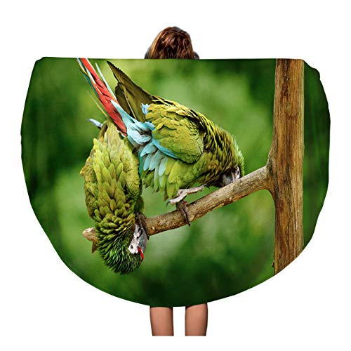- Semtomn 60 Inches Round Beach Towel Blanket Green Parrot Military Macaw Ara Militaris Costa Rica Wildlife Travel Circle Circular Towels Mat Tapestry Beach Throw