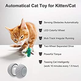 Comgoo Interactive Cat Toy, Automatic Irregular Feathers Birds Mouse Toy for Indoor Cat, LED Light Ball Toys for Kitten Cats, Robotic Cat Toys with USB Charging 360 Degree Self Rotating Ball Toy