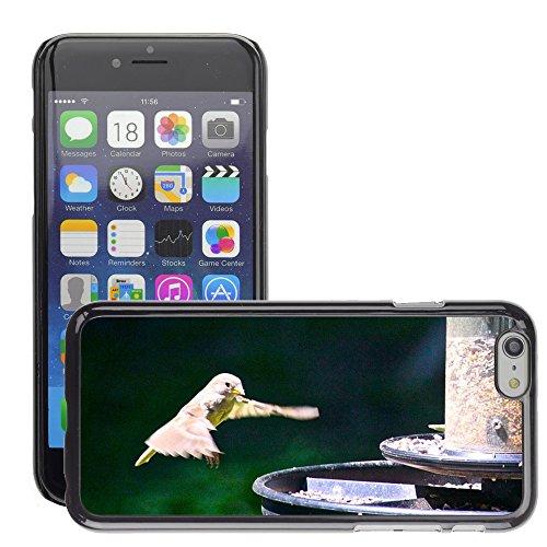 "Bild Hart Handy Schwarz Schutz Case Cover Schale Etui // M00134521 Hummingbird Vogel Flatternde Natur // Apple iPhone 6 PLUS 5.5"""