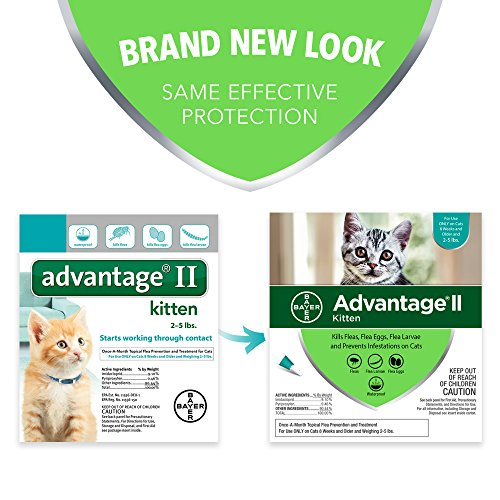 Bayer Advantage II Kitten Flea Treatment for Kittens, 2-5 lb, 2 doses by Bayer Animal Health (Image #1)