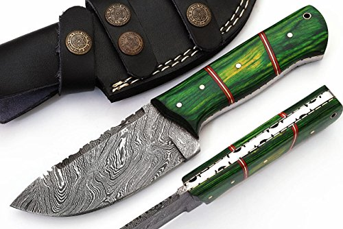 SharpWorld Beautiful Damascus Knife Made of Remarkable Damascus Steel and Exotic Handle -Best Hunting Knife with Sheath TJ102 (Green Wood) ()
