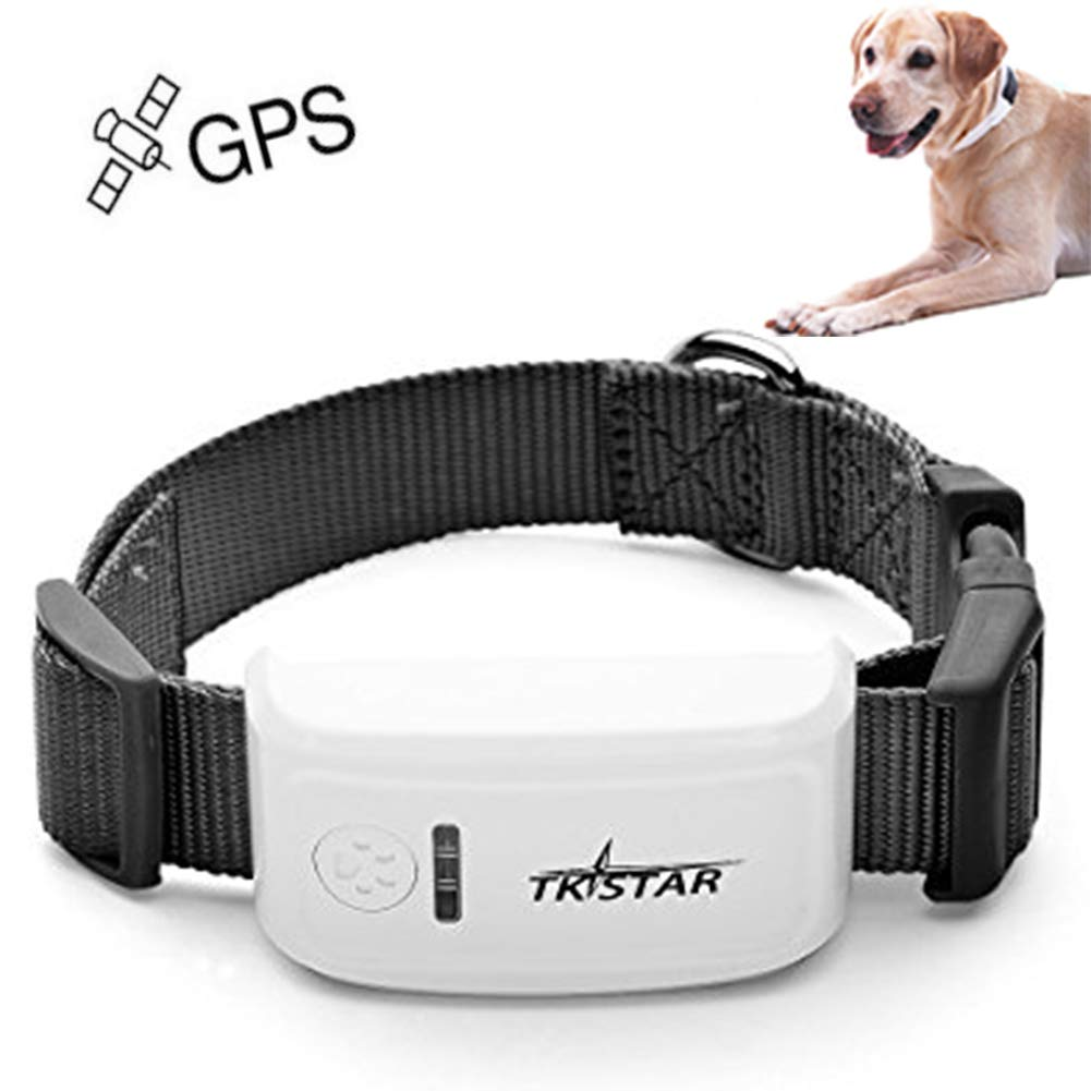 GPS Tracker for Dogs No Monthly Fees,Pet Activity Monitor with Free App, Applicable for GSM, WiFi with Live Location Updated Per 10S by WAFOR